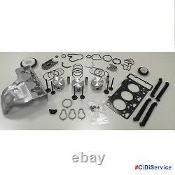 Engine Revision Set With Pistons Standard Intelligent 450 0.7 700cc 61/75 CV